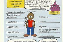 Critical Care Nursing/CCRN / by Allison Hayden
