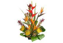 Pumehana - DIY Flower Arranging