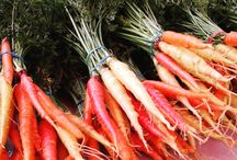 Roots / This board is dedicated to heirloom root vegetables: turnips, beets, radishes and more!
