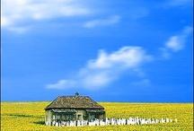 Russia Ukraine / by Bette Uwarow