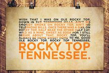 Go Vols / by Diana Brown