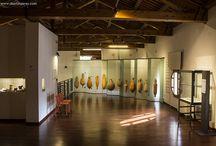 museum - exhibition