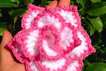 rosa colorida