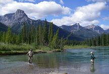 Banff Alberta Fly Fishing