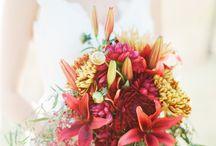 Bröllop/Wedding