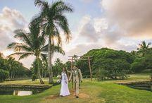 Photographer Weddings Kauai / Weddings Kauai