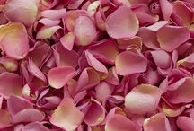 Rose Petals / Freeze dried rose petals are the perfect choice for wedding flower confetti as they are natural, biodegradable and non staining.