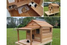 Cats / Stuffs about cats: furniture, shelters, practical ideas
