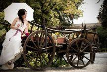 Wedding shoots / Some of my wedding photographs