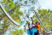 Ziplining in Florida