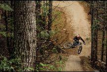 Mountain biking / by Kathryn Ford