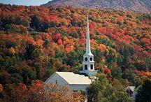Fall Foliage / by Kelli Last Meyer