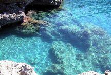 Maratea's Sea