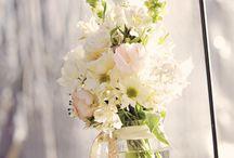 Jardineria y flores
