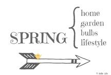 SPRING / . / by AnMa ZiNe ╰☆╮
