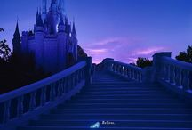 Disney World / My favorite place in the whole wide world