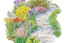 Garden Plans / by Karen Schmitt