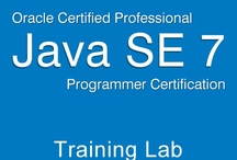 OCPJP 7 Training Lab / Oracle Certified Professional Java SE 7 Programmer study guide and mock exam simulator.