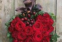 Fiori San Valentino