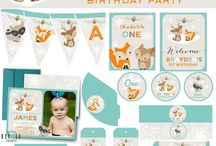 Winter Woodland Onederland Birthday Party Ideas