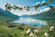 Norwegian Nature / Norsk natur