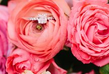 Will you Marry me? / Ultimate engagement  ring pretties