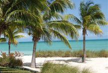 Bahamas Condos For Rent