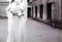 Brides with Cats / Cat wedding / by Kristi Oakes