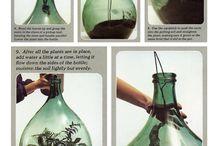 Inspiration : Terrariums