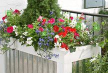 Garden genius