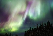Yukon / by Robyn Knibbs