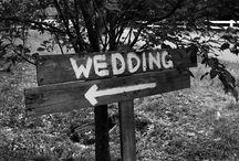 My Wedding Plans