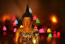 Magic lights - the bokeh