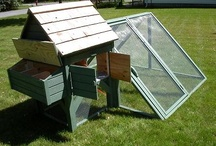 Life Naturally / Homesteading, DIY, Natural Remedies, Food Storage, and more