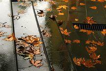 imagens com chuva