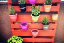 Wall mounted pots for flowers