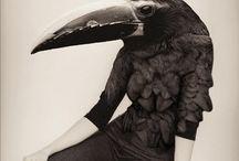 Black & White / by Priscilla de Gier