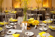Yellow & Grey / by City Club Los Angeles