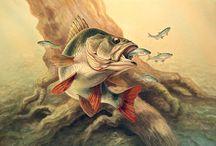 Рыбалка и рыба