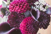 bukiet ślubny dalie/ bridal bouquet dahlias / bukiety ślubne z dali