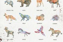 animalsss