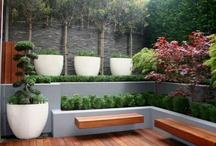 zeleň v architektuře