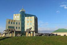 Punta Arenas / Es una ciudad y un puerto del extremo sur de Chile, capital de la Región de Magallanes y Antártica Chilena. Está localizada sobre la Península de Brunswick, en la ribera continental del Estrecho de Magallanes, y a pocos kilómetros del Cabo Froward el punto más austral de la masa continental de América, considerada la «Capital de la Patagonia Chilena».Esto ha dejado en el centro de la ciudad un carácter europeo en su diseño y una arquitectura sobresaliente.