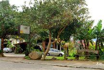 Che Lagarto Hostel Florianópolis