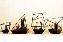 Stuff I like / by Erin Godbey