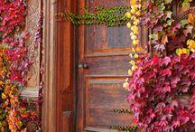 Portas e Janelas / Portas e janelas abertas, fechadas, novas, antigas. Portas e Janelas que inspiram.