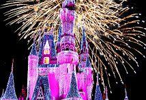 Disney World / by Marci McDougald