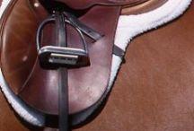 Helpful horse stuff / by Beth Watson