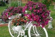 Grandads bike