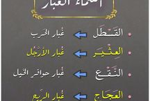عجائب اللغة العربية